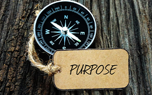 general-business-purpose
